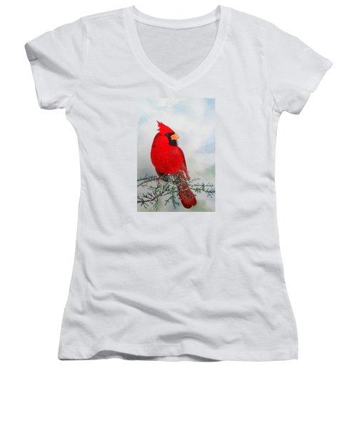 Cardinal Women's V-Neck T-Shirt (Junior Cut) by Laurel Best