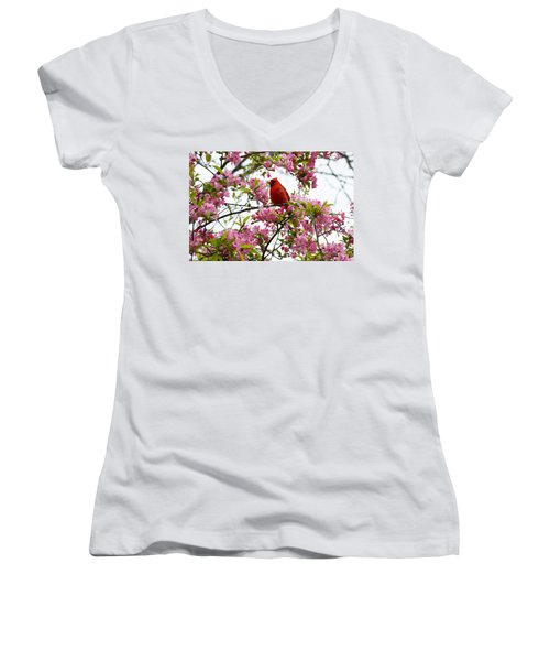 Cardinally Beautiful Women's V-Neck (Athletic Fit)