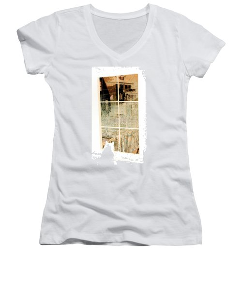 Cat Perspective Women's V-Neck T-Shirt (Junior Cut) by Jacqueline McReynolds