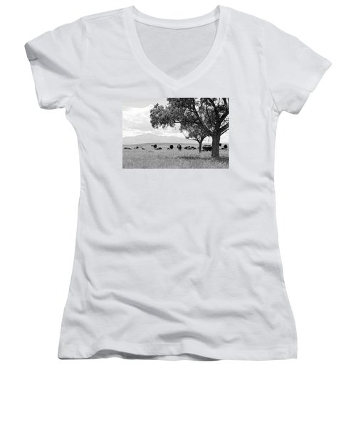 Cattle Ranch In Summer Women's V-Neck T-Shirt (Junior Cut) by Clarice  Lakota