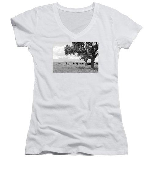 Cattle Ranch In Summer Women's V-Neck T-Shirt