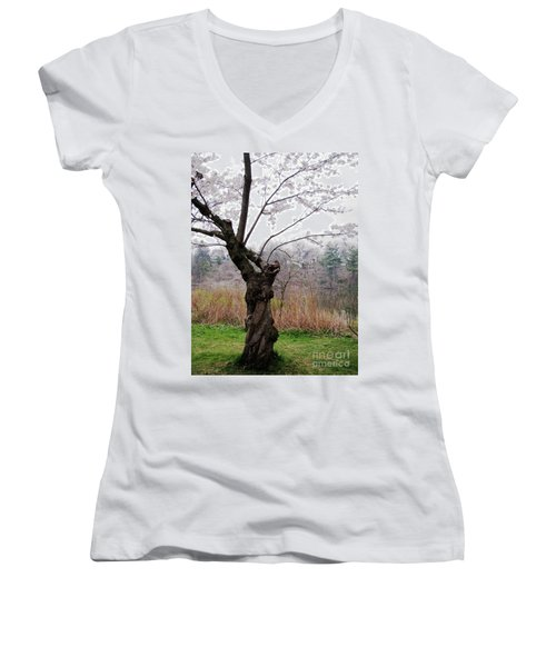 Women's V-Neck T-Shirt (Junior Cut) featuring the photograph Cherry Blossom Time by Nina Silver