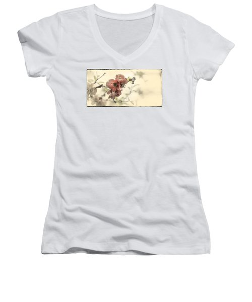 Women's V-Neck T-Shirt (Junior Cut) featuring the photograph Cherry Blossoms by Peter v Quenter