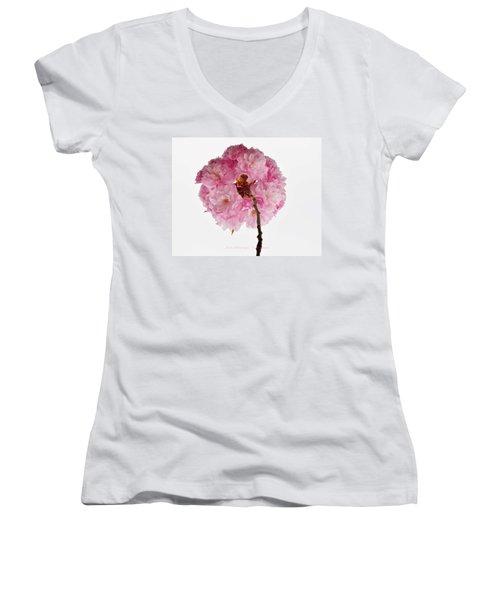 Cherry Globe Women's V-Neck T-Shirt