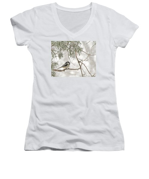 Women's V-Neck T-Shirt (Junior Cut) featuring the photograph Chickadee In Snowstorm by Paula Guttilla