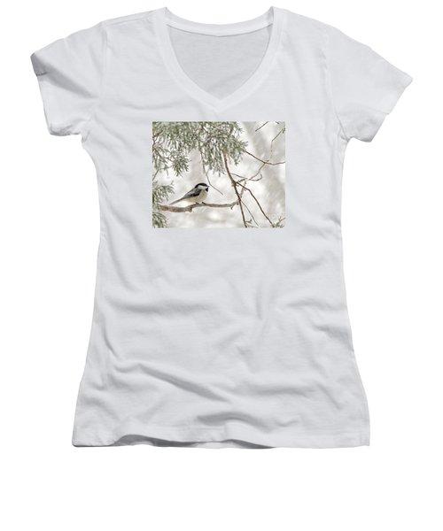 Chickadee In Snowstorm Women's V-Neck T-Shirt (Junior Cut)