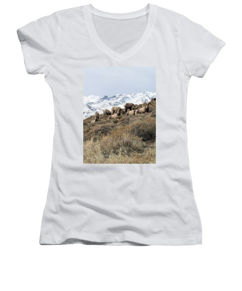 Chimney Rock Rams Women's V-Neck (Athletic Fit)