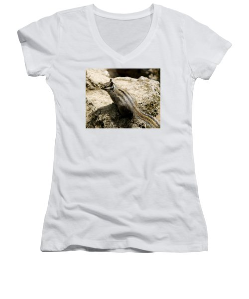 Women's V-Neck T-Shirt (Junior Cut) featuring the photograph Chipmunk On A Rock by Belinda Greb