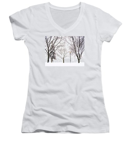 Christmas In Skaneateles Women's V-Neck T-Shirt