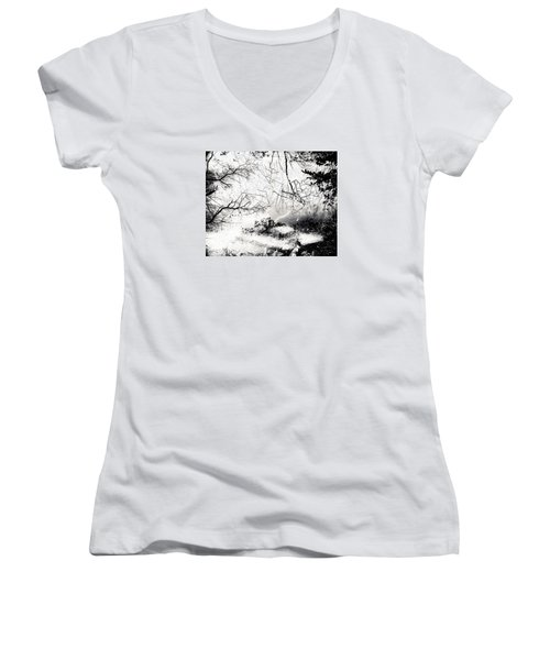 Confusion Of The Senses Women's V-Neck T-Shirt