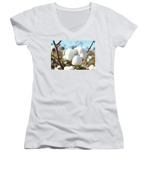 Cotton Boll Iv Women's V-Neck T-Shirt (Junior Cut) by Debbie Portwood