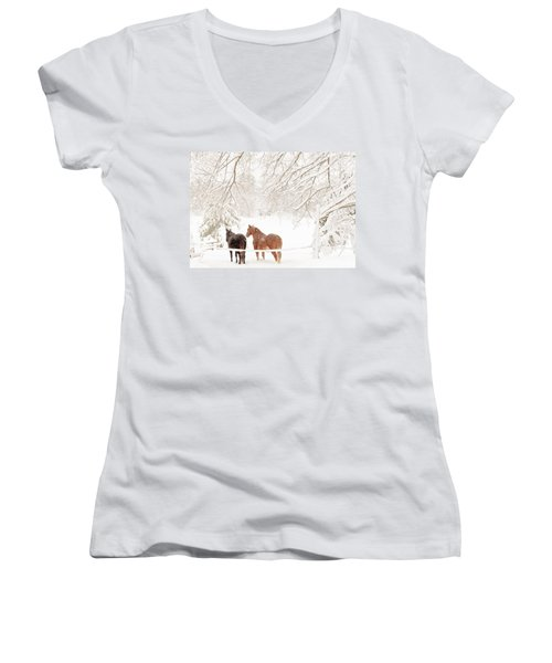 Country Snow Women's V-Neck T-Shirt