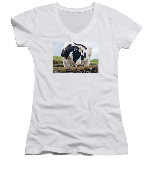 Cow With Head Turned Women's V-Neck (Athletic Fit)