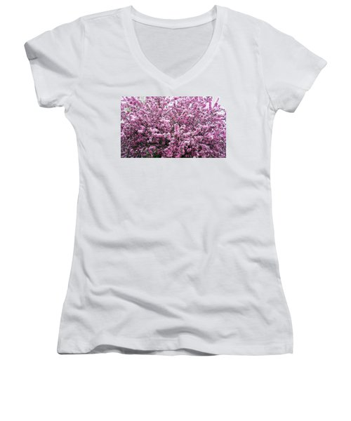 Crab Apple Tree Women's V-Neck T-Shirt
