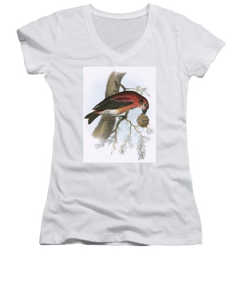 Crossbill Women's V-Neck T-Shirt