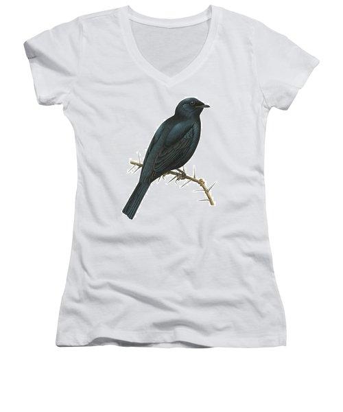 Cuckoo Shrike Women's V-Neck T-Shirt (Junior Cut) by Anonymous