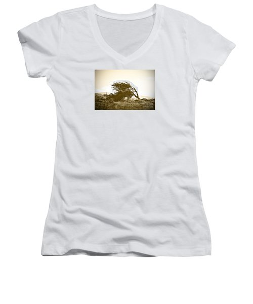 Cypress Trees In Monterey Women's V-Neck T-Shirt (Junior Cut) by Artist and Photographer Laura Wrede