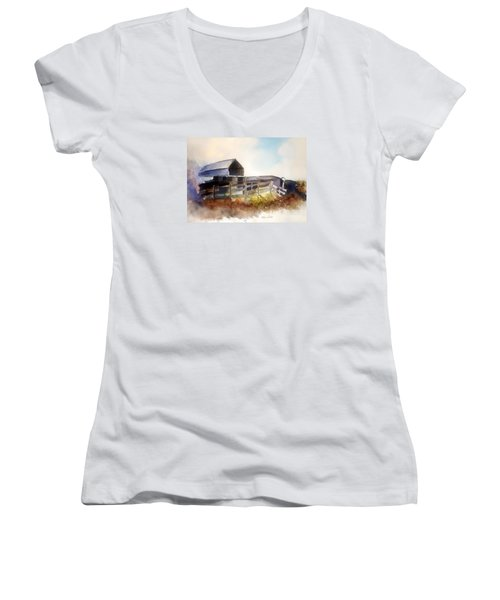 Dad's Farm Women's V-Neck T-Shirt (Junior Cut)