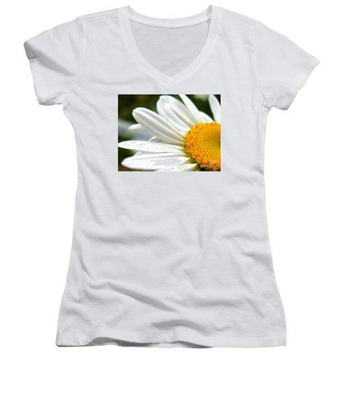 Daisy Women's V-Neck T-Shirt (Junior Cut) by Patti Whitten