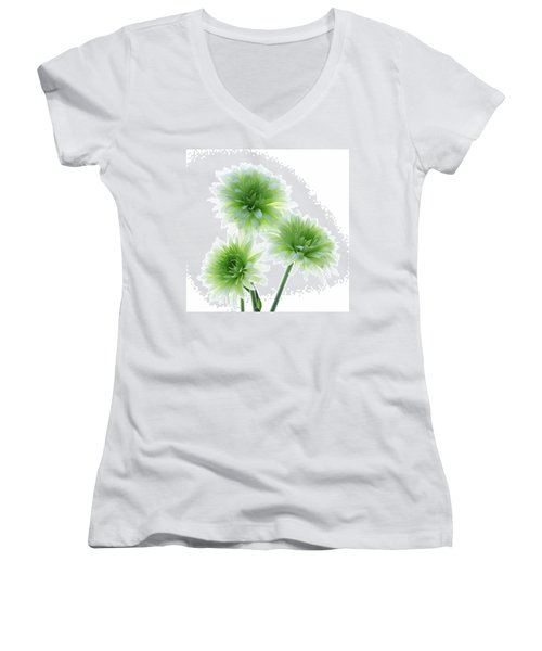 Deep In The Roots All Flowers Keep The Light Women's V-Neck