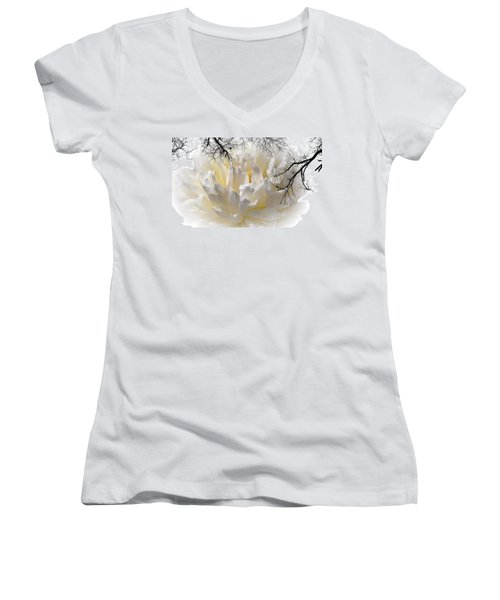 Delicate Women's V-Neck T-Shirt