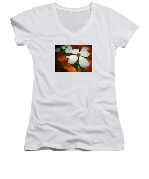 Dogwood Blossom Women's V-Neck T-Shirt (Junior Cut) by Brian Wallace