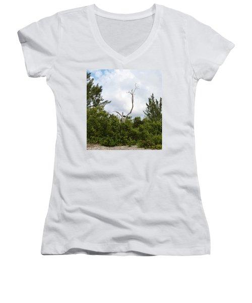 Women's V-Neck T-Shirt (Junior Cut) featuring the photograph Druid Dance by Amar Sheow