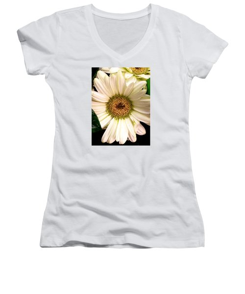Easter 2014-2 Women's V-Neck T-Shirt (Junior Cut) by Jeff Iverson