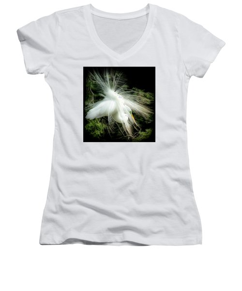 Elegance Of Creation Women's V-Neck T-Shirt