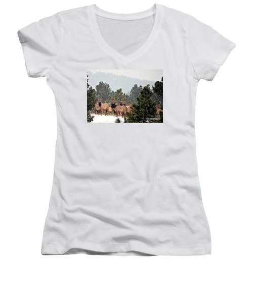 Women's V-Neck T-Shirt (Junior Cut) featuring the photograph Elk In The Snowing Open by Barbara Chichester