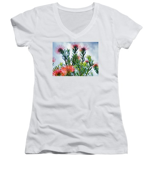 Enchanting Gardens 42 Women's V-Neck T-Shirt (Junior Cut) by Dawn Eshelman