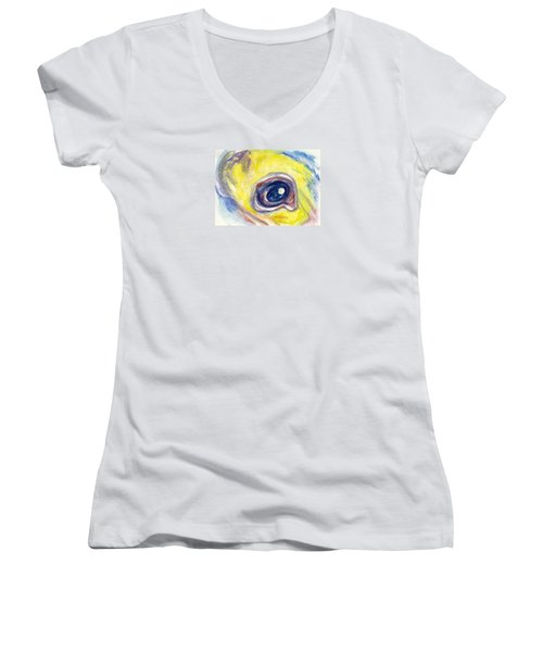 Eye Of Pelican Women's V-Neck T-Shirt