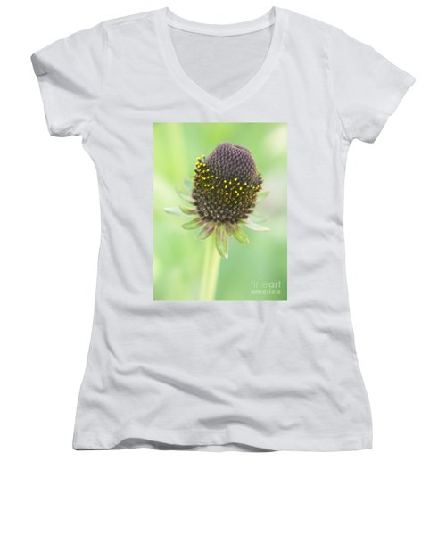 Fairy Ring Women's V-Neck T-Shirt