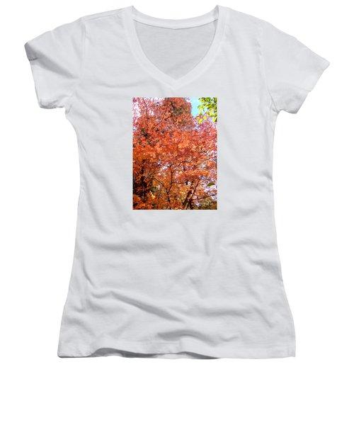 Fall Colors 6357 Women's V-Neck T-Shirt (Junior Cut) by En-Chuen Soo