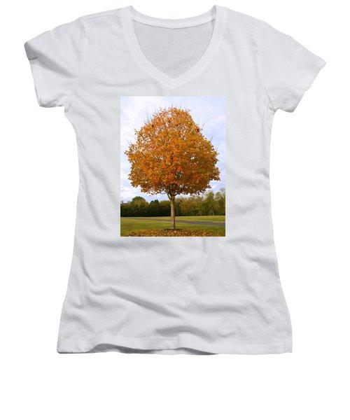 Fall Sugar Maple Women's V-Neck T-Shirt (Junior Cut) by Melinda Fawver