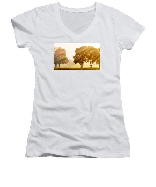 Falls Delight Women's V-Neck T-Shirt (Junior Cut)