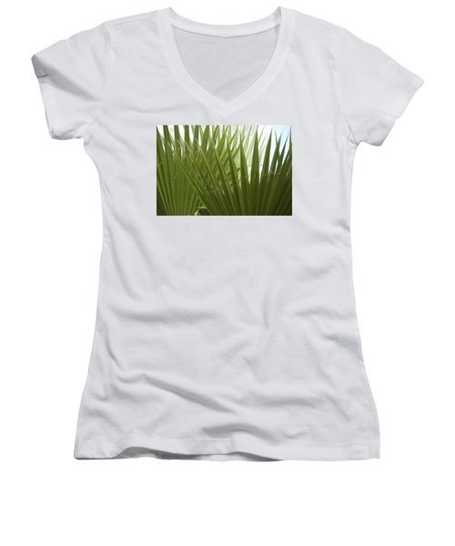 Fan Fair Women's V-Neck T-Shirt
