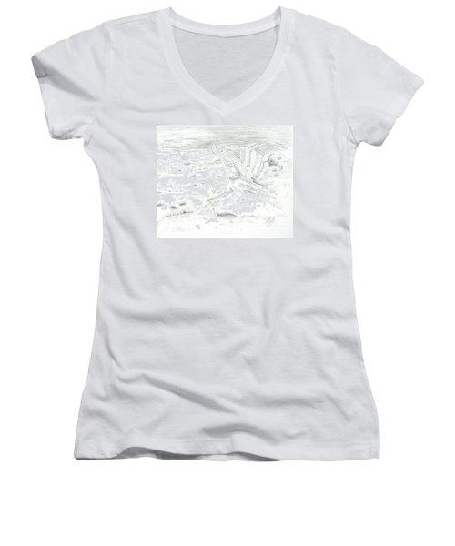Flight Of Grace Women's V-Neck T-Shirt