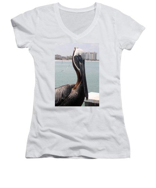 Women's V-Neck T-Shirt (Junior Cut) featuring the photograph Florida's Finest Bird by David Nicholls