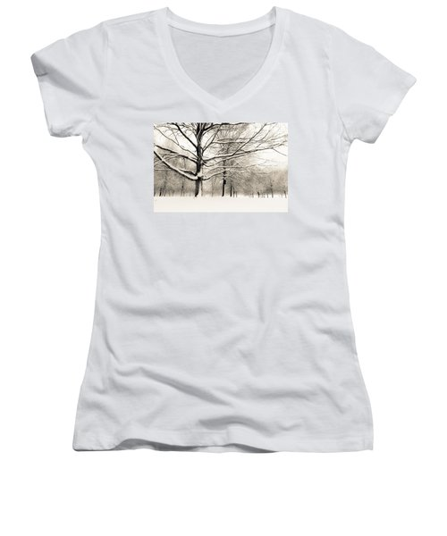 Francis Park In Snow Women's V-Neck (Athletic Fit)