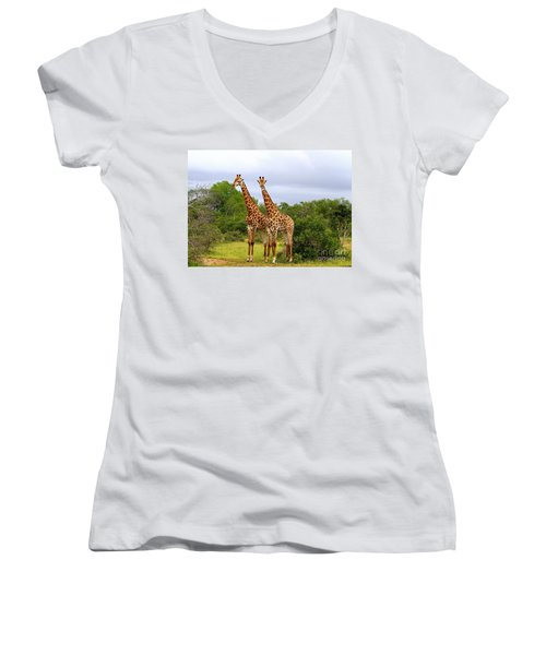 Giraffe Males Before The Storm Women's V-Neck (Athletic Fit)