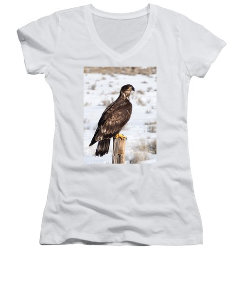 Golden Eagle On Fencepost Women's V-Neck T-Shirt (Junior Cut)