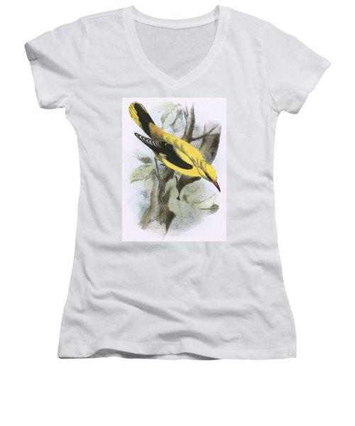 Golden Oriole Women's V-Neck T-Shirt