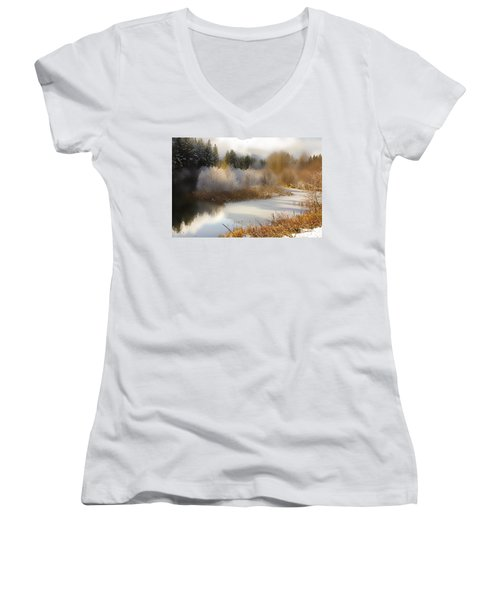 Golden Winter Women's V-Neck T-Shirt
