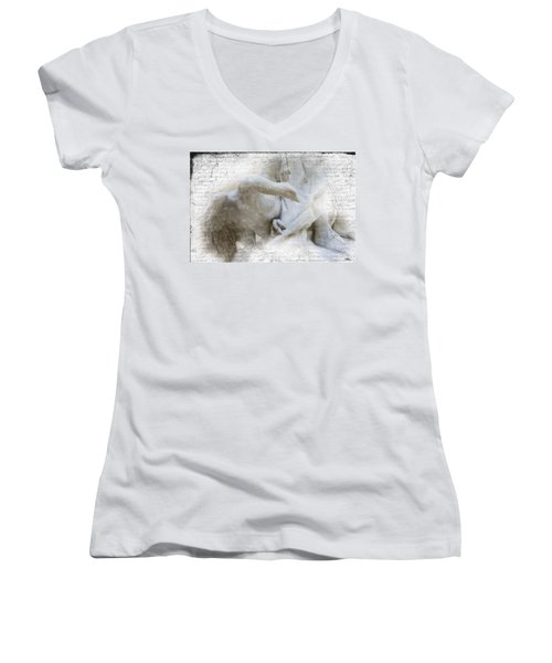 Goose With Master Women's V-Neck T-Shirt