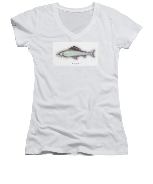 Grayling - Thymallus Thymallus - Ombre Commun - Harjus - Flyfishing - Trout Waters - Trout Creek Women's V-Neck (Athletic Fit)