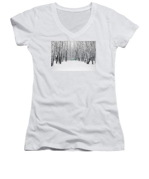 Green Bench Women's V-Neck T-Shirt (Junior Cut) by Alexander Senin