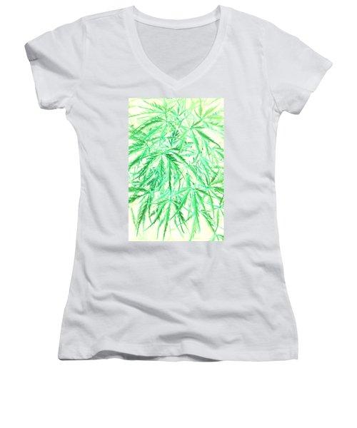 Women's V-Neck T-Shirt (Junior Cut) featuring the photograph Green Splender by Jamie Lynn