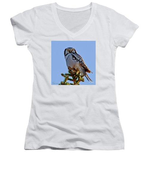 Hawk Owl Square Women's V-Neck T-Shirt (Junior Cut) by Torbjorn Swenelius
