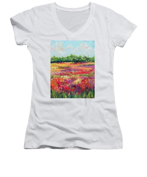 Heaven's Breath Women's V-Neck T-Shirt